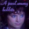 Gentle Hobbit