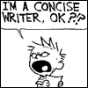 concise writer