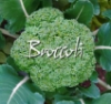 broccoli662 userpic