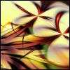 sans_fin_finale userpic