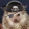 Meg: Piratey
