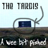MV: DW - TARDIS pished