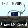 DW - TARDIS pished