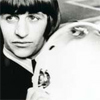 beatles ringo is mr tamborine man