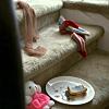 little_bidi userpic
