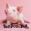theposhpig userpic
