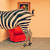 zebrapants userpic