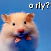 The Mellifluous Leaper 182: Hamster - O Rly?