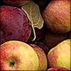 edensapples userpic