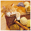 stitchy_stitchy: knitting