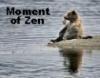 Moment of Zen