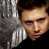 Dean winter