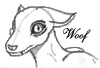 torch_wolf userpic