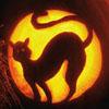 Halloween-2 (Cat)