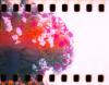 skizzerkid userpic