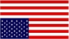 When life gives you lemmings...: AmeriCrisis