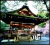 Ohio University's Japanese Language Club