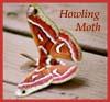howlingmoth userpic