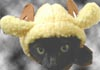 lord and master of the broken children: sheep kittyhat