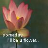 Someday I'll be a flower