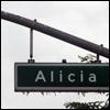 Alicia: Fight Club