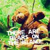 bears on the island?!?!
