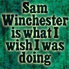 SPN: Wish I Was Doing Sam