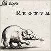elephan tregnum