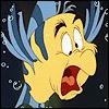ariel flounders a bird