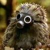 dprssd_hedgehog userpic