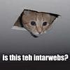 intarwebs?