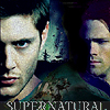 Dean & Sam - supernatural - bugs