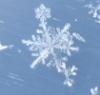 snowprinces userpic