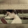 book sarah