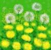litse userpic