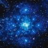 голубые звезды