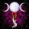 nassa userpic