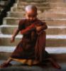 savvy monk
