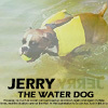Jerry Water Dog