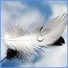 alvina3 userpic