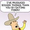 Fiber Cowboy