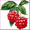 ragingraspberry userpic