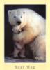 curious_reader: bearhug