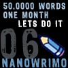 NaNoWriMo 2006