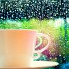 MissBlane: Rain