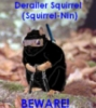 Squirrel-nin