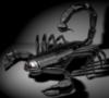 scorpiohka