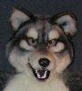 smashwolf