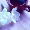 tea and white flowers