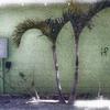 atknot userpic